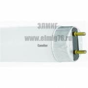 ЛЛ 10вт 4200К F10 T8 Лампа линейная люминесцентная Camelion