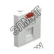 87013 Модуль роз.информ.45х45,RJ,1 вход,бел.